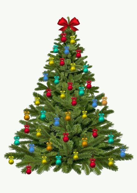 christmas-tree-1833186_960_720